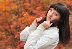 The girl in an autumn forest Stock Images
