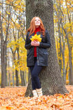 Girl in autumn forest keep leaves in the hands, stand near big tree Stock Photography