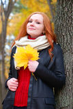 Girl in autumn forest keep leaves in the hands, stand near big tree Royalty Free Stock Photos