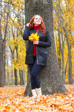 Girl in autumn forest keep leaves in the hands, stand near big tree Royalty Free Stock Image