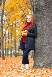 Girl in autumn forest keep leaves in the hands, stand near big tree Royalty Free Stock Photography