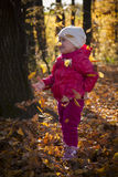 Girl in autumn forest Stock Images