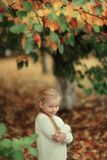 Girl in the autumn forest Stock Photo