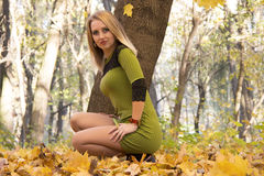 Girl in autumn forest Royalty Free Stock Photography