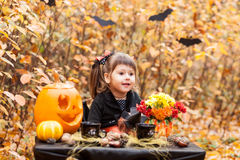 Girl in the autumn forest Stock Photos