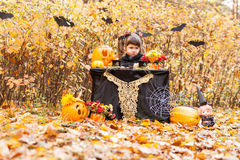 Girl in the autumn forest Royalty Free Stock Image