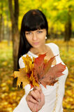 The girl in the autumn keeps the leaves Stock Photography