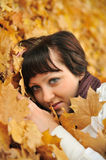 The girl in autumn leaves Stock Images