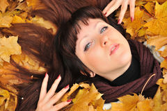The girl in autumn leaves Stock Image