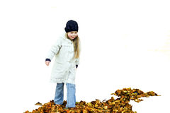 Girl and autumn leaves. Little smiling girl walking on autumn leaves isolated on white royalty free stock photo
