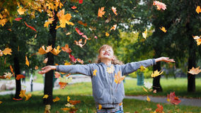 Girl. Autumn leaves Royalty Free Stock Image