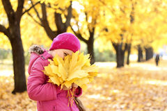 Girl with autumn leaves. Girl in a pink hat with autumn leaves in the hands Royalty Free Stock Image