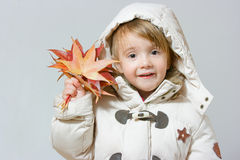 Girl with autumn maple leaf Royalty Free Stock Images