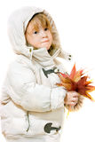 Girl with autumn maple leaves Royalty Free Stock Photo