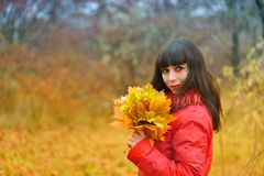 Girl with autumn maple leaves Royalty Free Stock Image