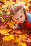 Girl in autumn orange leaves. Outdoor. Stock Image