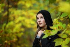 A girl is in an autumn park Royalty Free Stock Photo
