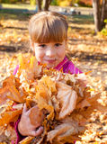 Girl in autumn park Stock Photography