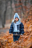 Girl in an Autumn park. Portrait of little girl in the leaves Stock Images