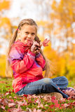 Girl in Autumn Park. Beautiful young girl sitting on a grass with colorful autumn leaves, holding some red maple leaves close to her face stock image
