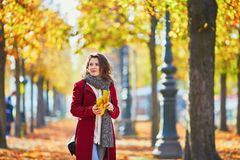 Girl in autumn park with golden foliage on a sunny fall day, holding yellow leaves in her hands. Beautiful young girl in autumn park with golden foliage on a stock photo