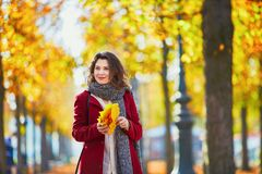 Girl in autumn park with golden foliage on a sunny fall day, holding yellow leaves in her hands. Beautiful young girl in autumn park with golden foliage on a royalty free stock images