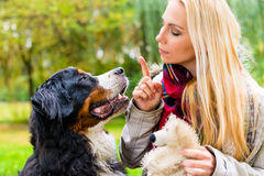 Girl in autumn park training her dog in obedience Stock Photos