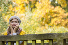A girl in the autumn park Royalty Free Stock Images