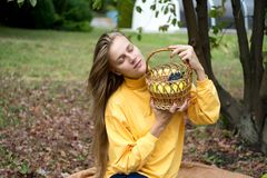 Girl autumn picnic royalty free stock photography