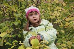 Girl among autumn trees Stock Photos