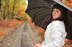 The girl in an autumn wood with a umbrella. Stock Photos