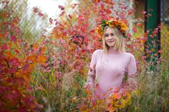 A girl in an autumn wreath. Girl in autumn wreath and pink dress in branches with red leaves royalty free stock photography