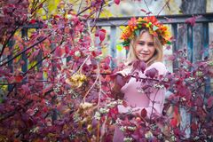 A girl in an autumn wreath. Girl in autumn wreath and pink dress in branches with red leaves royalty free stock images