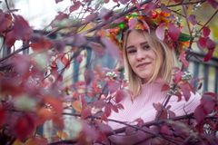 A girl in an autumn wreath. Girl in autumn wreath and pink dress in branches with red leaves stock image