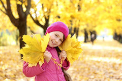 Girl in autumn. Girl with autumn yellow leaves Stock Image