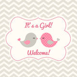 Girl baby shower with two cute birds, illustration. Girl baby shower with two cute pink birds on abstract chevron background, vector illustration, eps 10 Stock Photo