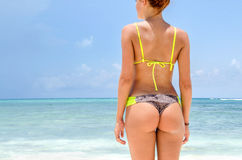 Girl back at the beach. Body back girl at the beach Royalty Free Stock Photos