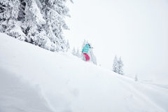 Girl in backcountry snowboarding Stock Image