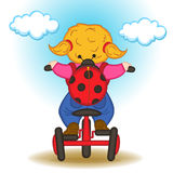 Girl with backpack in form of ladybug rides bicycle Royalty Free Stock Photos
