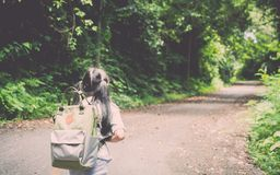 Girl with backpack hiking to the hill. Stock Photography