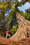 Girl with backpack standing near the big tree, USA Stock Photography
