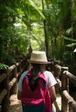 Girl with backpack walking in to tropical rainforest. stock image