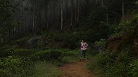 The girl with backpack is walking in the woods stock video footage