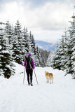 Girl backpacker trekking in winter forest with dog Stock Photos