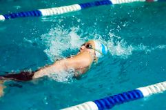 Girl backstroke Stock Photography