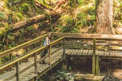 Girl at Baden Powell Trail near Quarry Rock at North Vancouver,. Photo of Girl at Baden Powell Trail near Quarry Rock at North Vancouver, BC, Canada Royalty Free Stock Photography