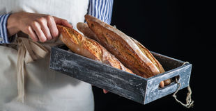 Girl baker holding freshly baked baguettes. Royalty Free Stock Images