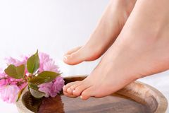 Girl bare feet with french pedicure on nails on wooden bowl with water and pink flower in beautiful and spa salon. Beautiful young gently woman bare feet with royalty free stock images