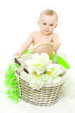 Girl with basket Stock Photos