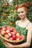 Girl with basket of apples Stock Photos